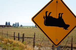 cow tipping sign